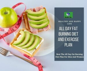 All Day Fat Burning Diet