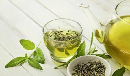 Green Tea Fat Burner - Green Tea