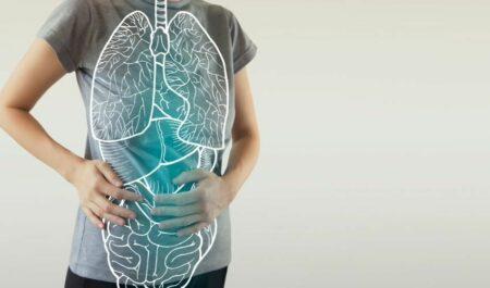 Alcohol First Impairs Your - Internal Organs