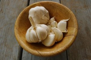 Elephant Garlic - garlic nutrition facts