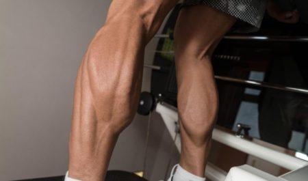 Upper Body Exercises For Seniors - Calf Exercise