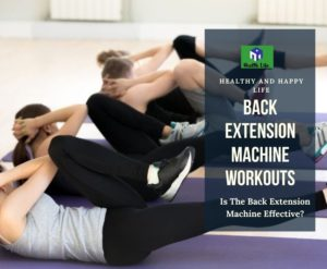 Back Extension Machine Workout