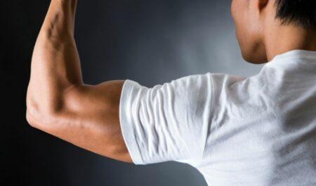 Preacher Curl Machine - the biceps