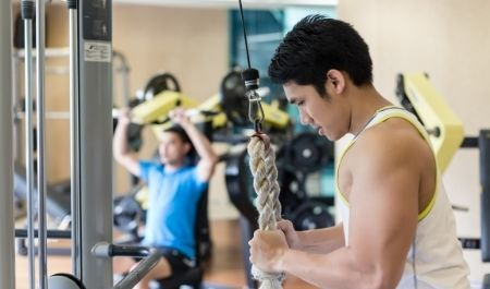 Cable Tricep Extension - Cable Tricep Pushdown