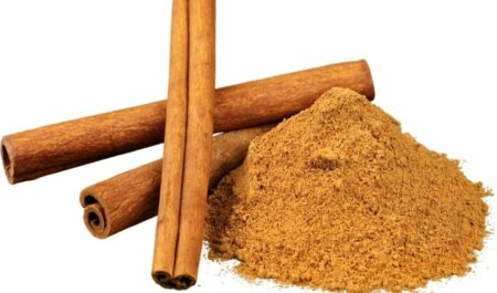 plant therapy essential oils - cinnamon