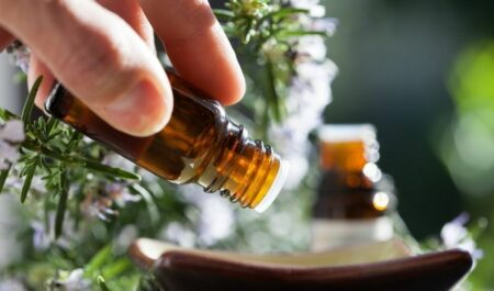 plant therapy essential oils - essential oils