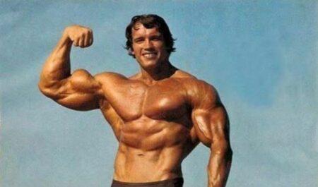 Arnold Schwarzenegger Sons - arnold schwarzenegger