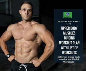 Upper Body Muscles