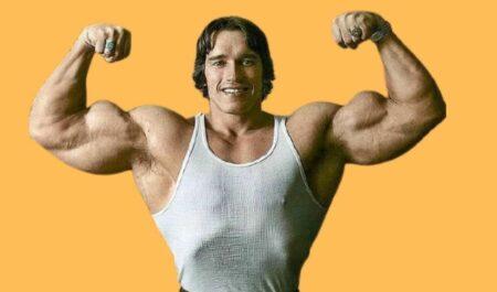Arnold Schwarzenegger Biceps - Bicep size
